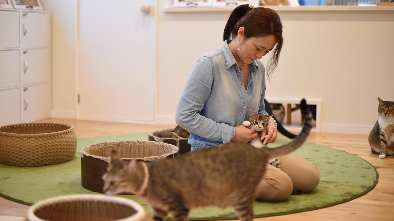 【浜魂人vol.2】野良猫の問題は、地域に暮らす人たちの問題。