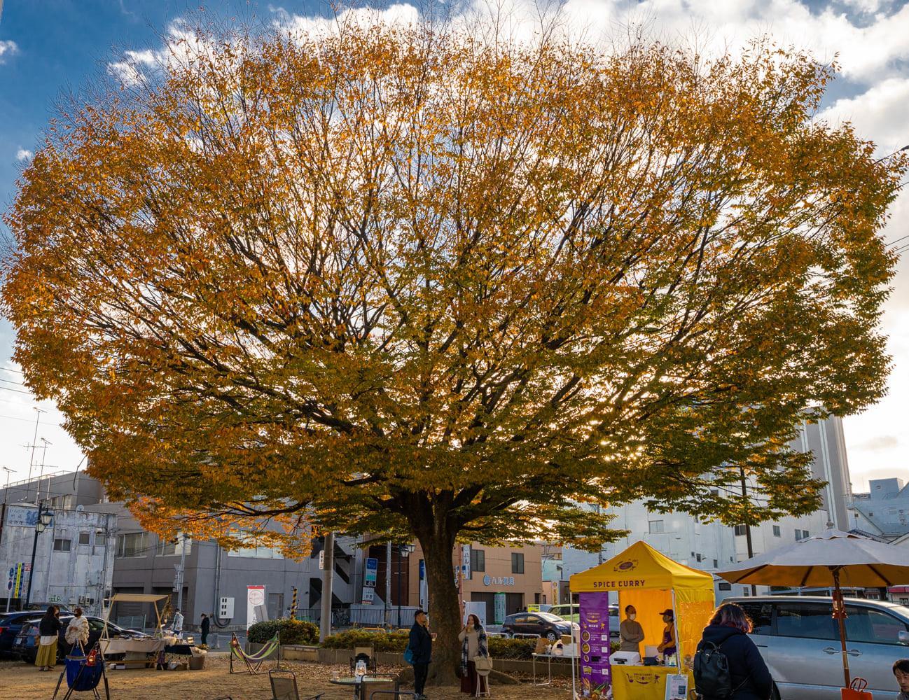 屋外を日常に!<br/>〈Park+@大工町公園〉<br/>12/13(日)に開催します!!<br/>